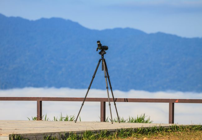 Best Tripod for Spotting Scopes: 2020 Buyer's Guide and In-Depth Reviews